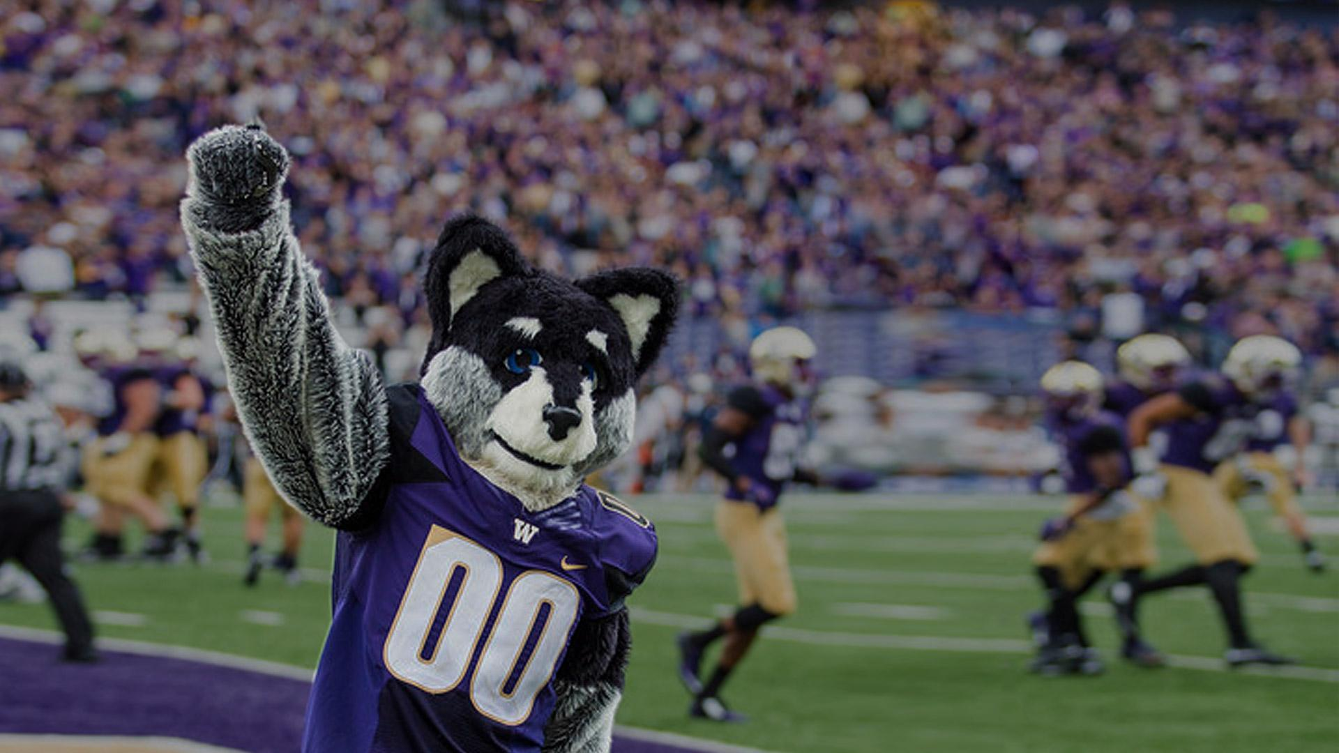 Huskies are Rose Bowl Bound!