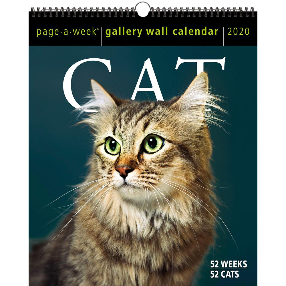 2020 Cat Page-A-Week Gallery Wall Calendar Front