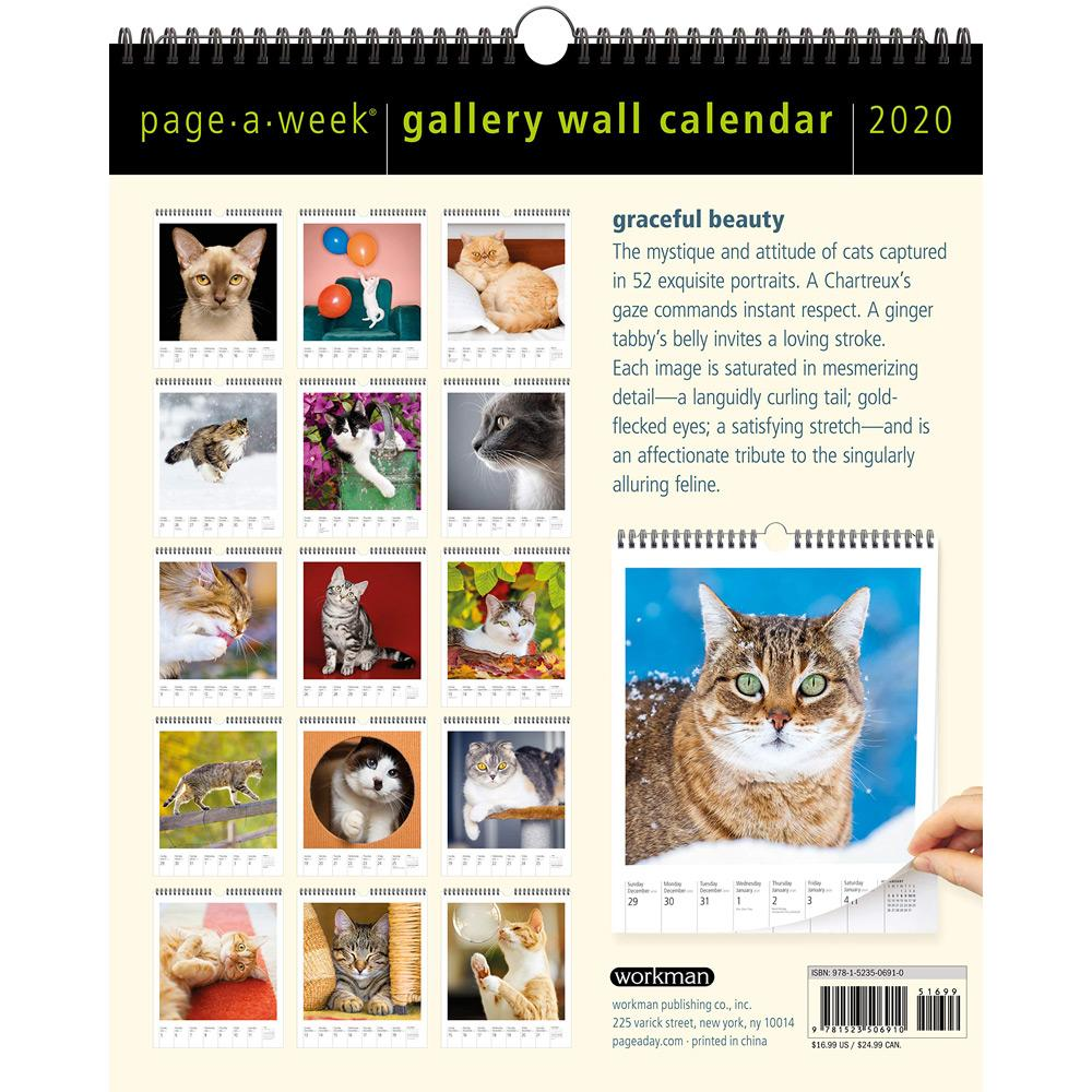 2020 Cat Page-A-Week Gallery Wall Calendar Back