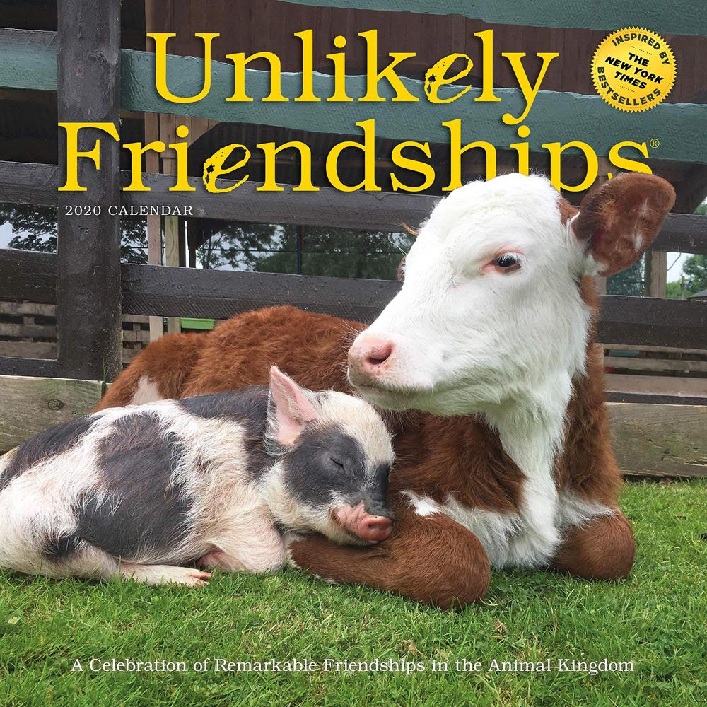 2020 Unlikely Friendships Wall Calendar Front