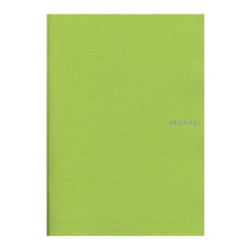 "Fabriano EcoQua Soft Bound Lined 8""x11"" Notebook 38ct Lime"
