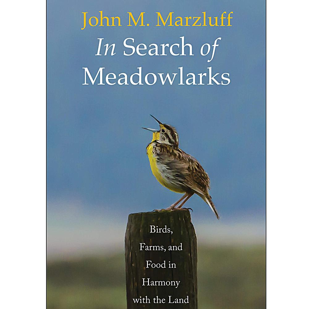 In Search of Meadowlarks by John M. Marzluff