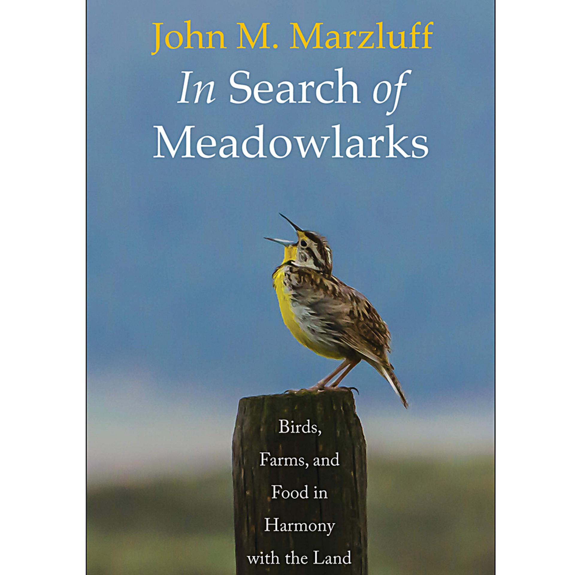 In Search of Meadowlarks by John M. Marzluff