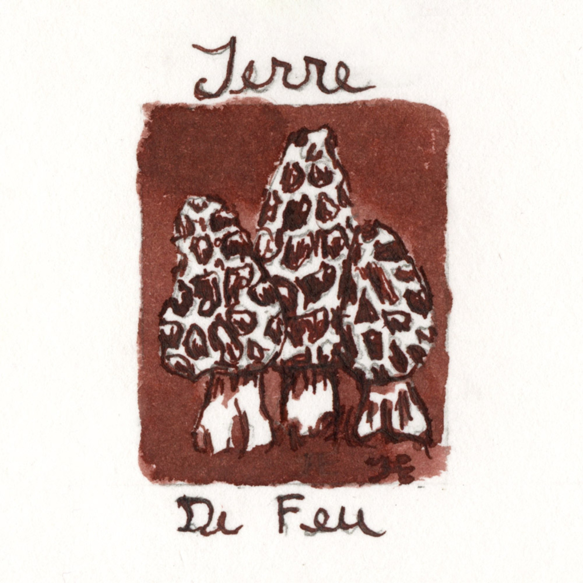 J.Herbin 10ml Fountain Pen Ink Terre De Feu