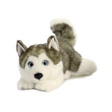 Miyoni Cuddly Husky 11 Inch Plush