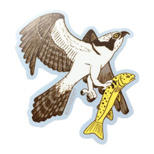 Noteworthy Osprey Sticker