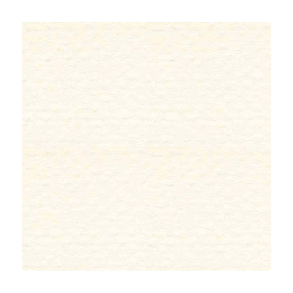 Strathmore Artist Texture Paper Cast Ivory