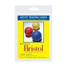 Strathmore 300 Artist Trading Cards Vellum Bristol 20 Pack