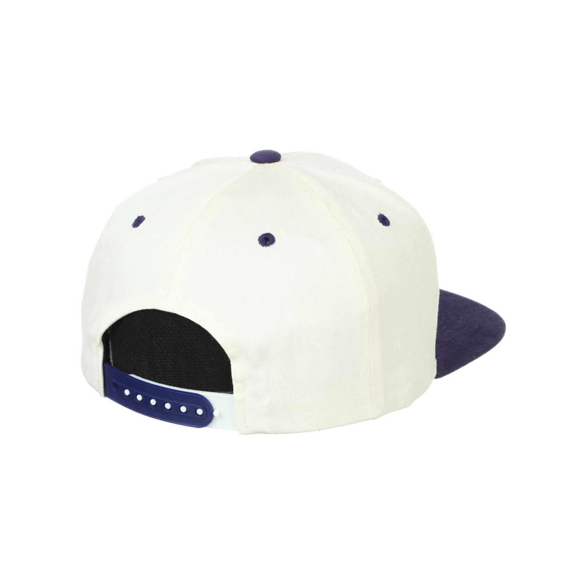 Zephyr Unisex Ivory Vault Dog W Paramount Snapback Hat – Back