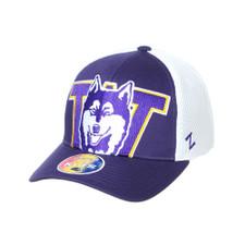 Zephyr Unisex Purple Vault Dog W Crony Snapback Hat – Front