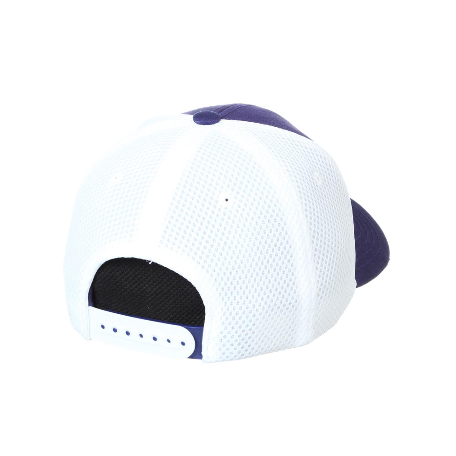 Zephyr Unisex Purple Vault Dog W Crony Snapback Hat – Back